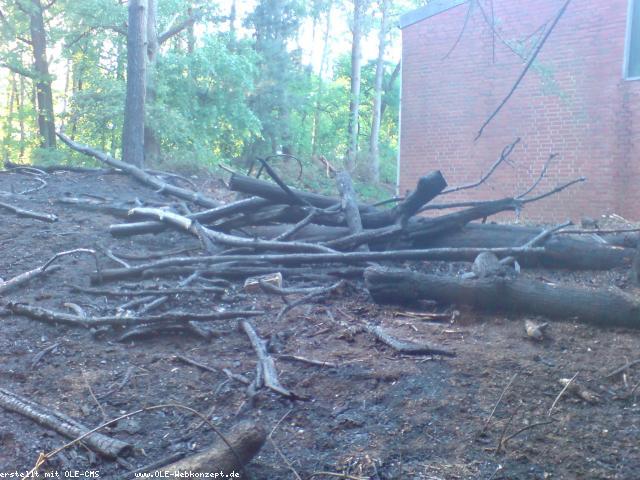 Feuer in den Eper-Bülten: Feuerwehr mahnt zur Vorsicht
