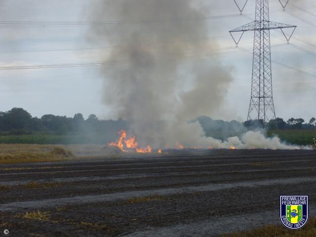 Brennt Stoppelfeld