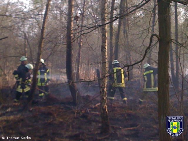 Brennt Unterholz
