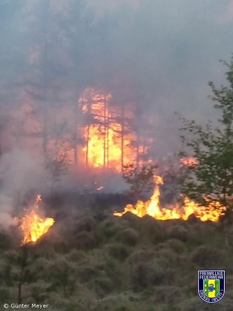 Waldbrand im Rüenberger Venn
