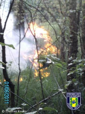 Feuer Wald Hünfelder Moor