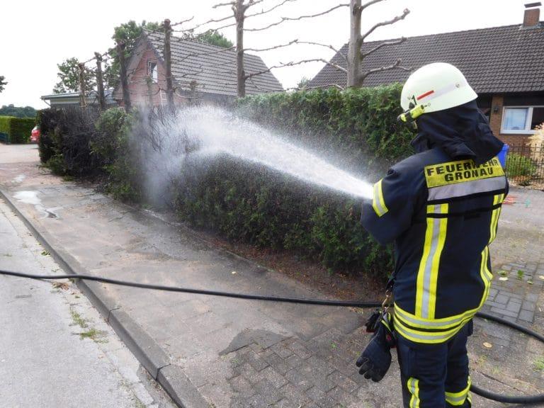 Mit Abflämmgerät Hecke in Brand gesetzt