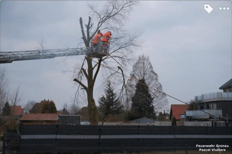 Baum drohte auf Nachbargrundstück zu fallen