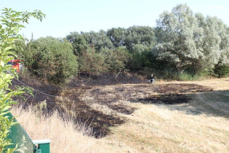 Schnelles Eingreifen der Feuerwehr verhinderte größeren Flächenbrand