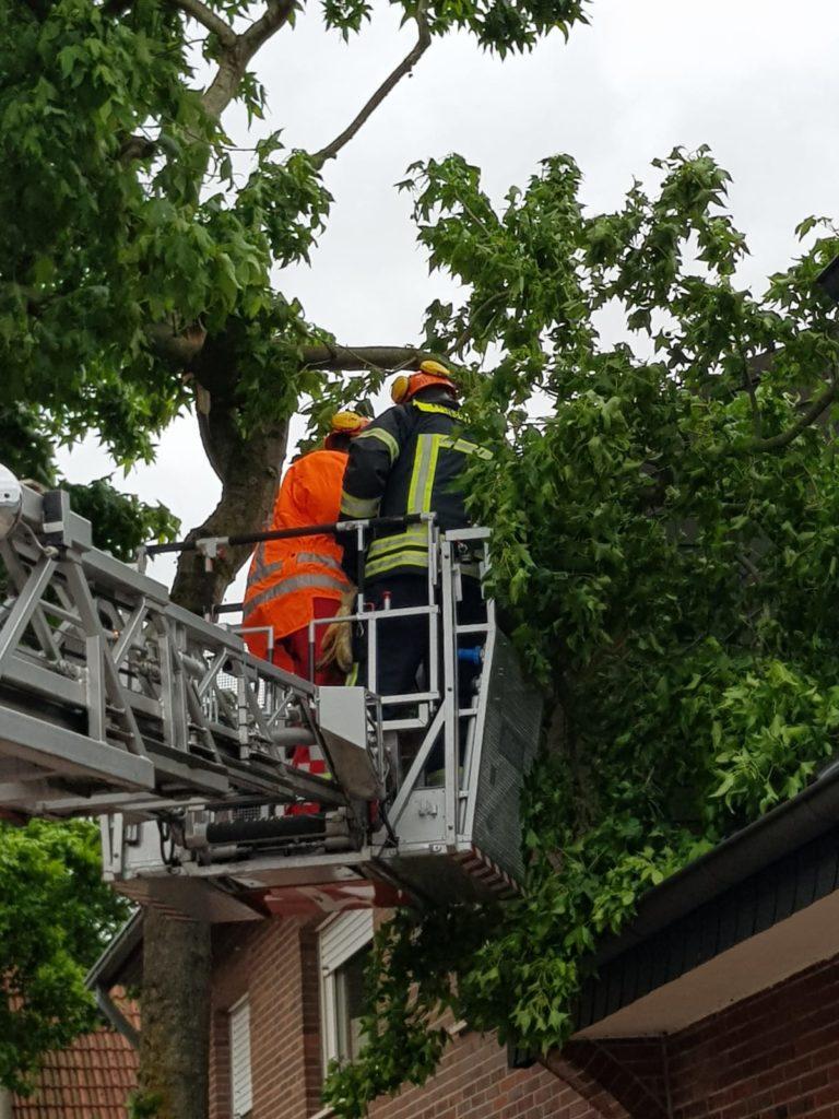 Sturmtief Ivan bescherte der Feuerwehr Gronau einige Arbeit