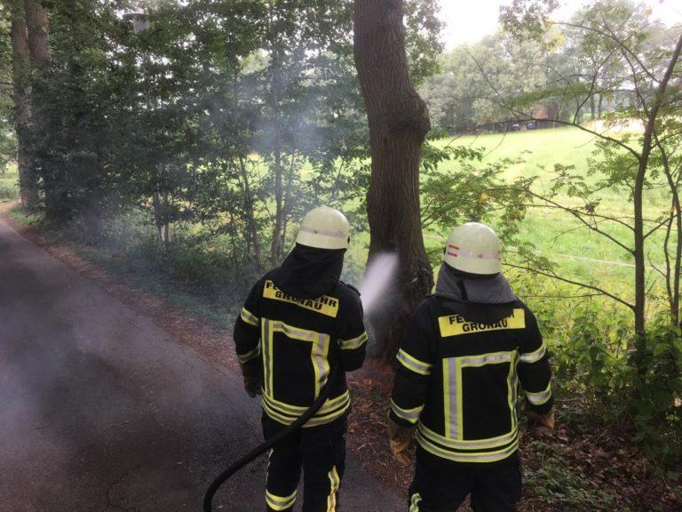 """Hohler Baum brannte """"Am Glanerfeld"""""""